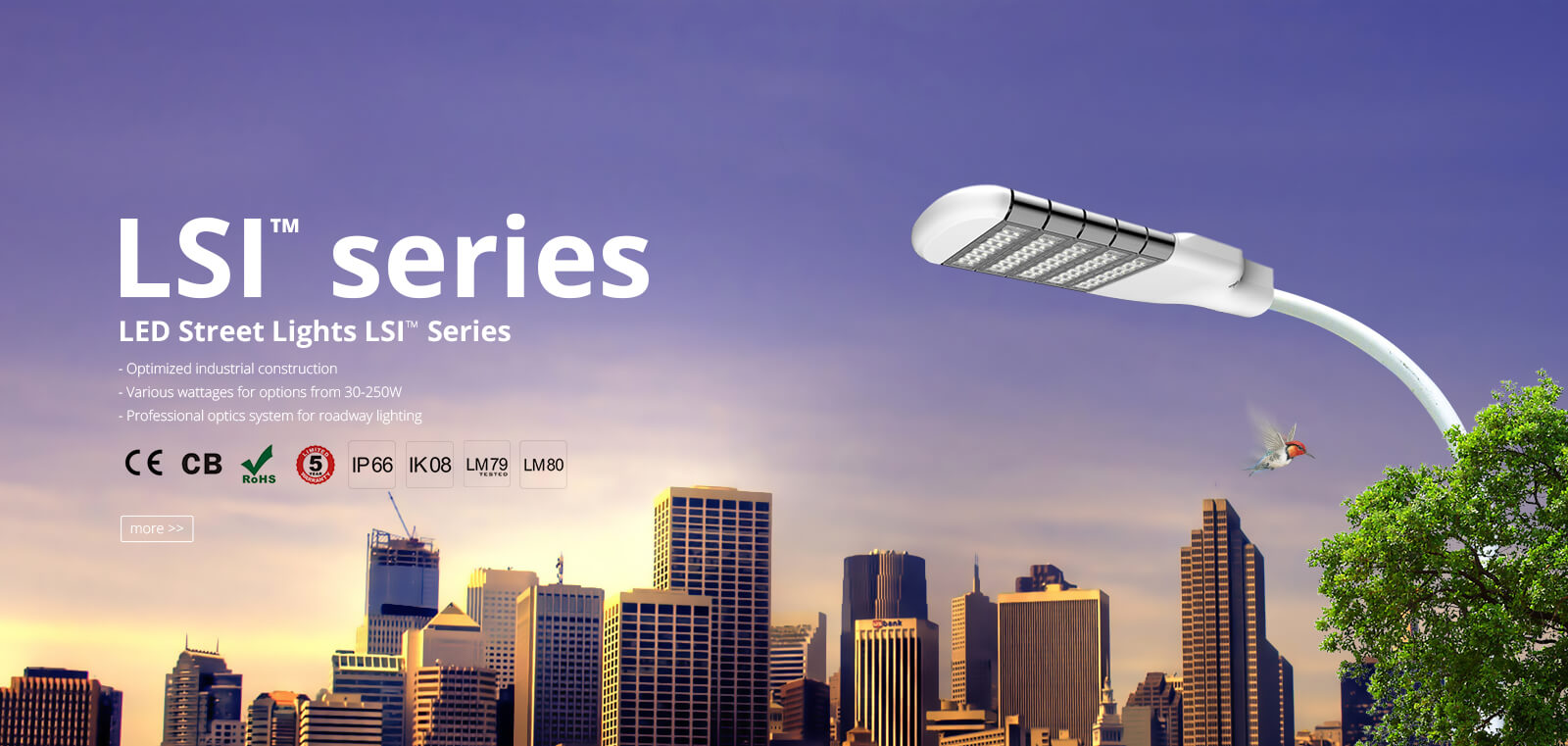 led street lights lsi