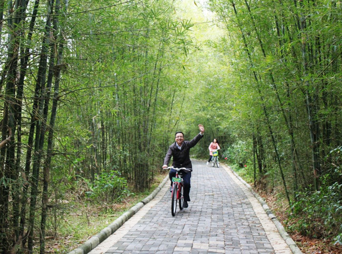 Green Bicycle Travelling in Zengcheng
